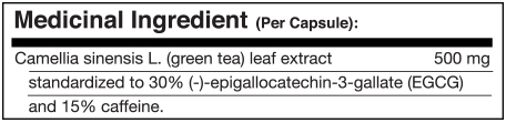 green-tea-extract-facts